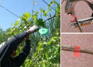 la mejor entutora de plantas, atadora de cinta profesional, atadora de plantas eléctrica,